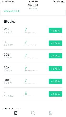 Robinhood Stock Investments